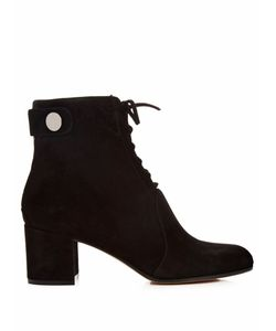 Gianvito Rossi | Finlay Lace-Up Suede Ankle Boots