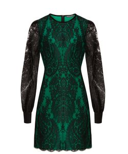 Alexander McQueen | Round-Neck Lace Mini Dress