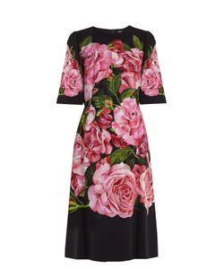Dolce & Gabbana | Roses-Print Crepe Dress