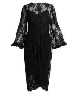 Dolce & Gabbana | Galon Cotton-Blend Lace Dress