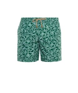 THORSUN | Pescada-Print Swim Shorts