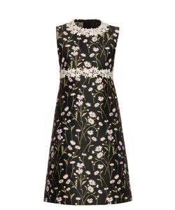 Giambattista Valli | Daisies-Embroidered Sleeveless Twill Dress