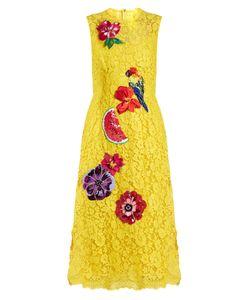 Dolce & Gabbana   Embroide Cordonetto-Lace Dress