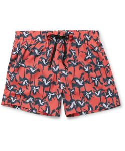 Everest Isles | Anton Mid-Length Printed Swim Shorts