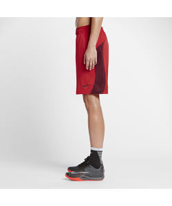 Nike | Баскетбольные Шорты 23 См