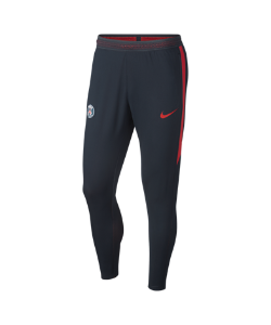 Nike | Футбольные Брюки Paris Saint-Germain Strike Flex