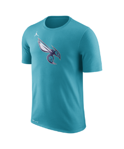 Nike | Футболка Нба Charlotte Hornets Jordan Dry Logo