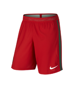 Nike | Футбольные Шорты Portugal Vapor Match Home/Away