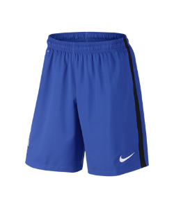 Nike | Футбольные Шорты 2016 Fff Stadium Home/Away