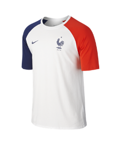 Nike | Футболка Fff Match