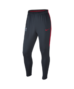 Nike | Футбольные Брюки Paris Saint-Germain