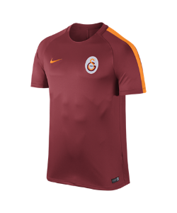 Nike | Игровая Футболка Dry Galatasaray S.K.