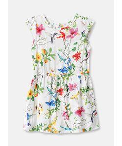 OSTIN   Платье В Принт