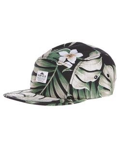 Penfield | Бейсболка Пятипанелька Casper Cap Black Palm