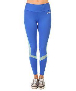 CajuBrasil   Леггинсы Женские New Zealand Legging Stripe Blue