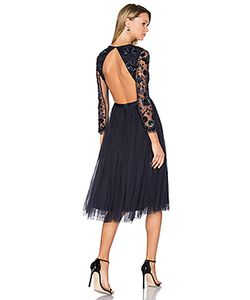 Needle & Thread | Embellished Butterfly Dress