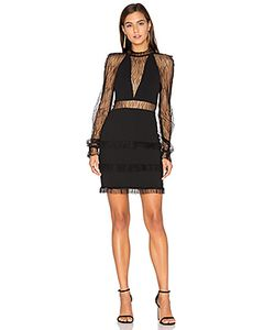 Nicholas | Filigree Lace Halter Plunge Dress