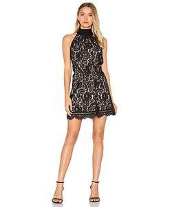 Joie | Кружевное Платье Cyndi