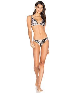 Zimmermann | Gossamer Applique Bikini Set