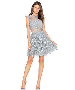 Karina Grimaldi | Кружевное Мини-Платье Manhattan