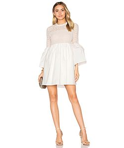 Endless Rose | Flare Sleeve Lace Mini Dress