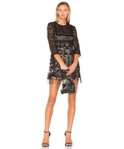 Red Valentino | Lace Fit Flare Mini Dress