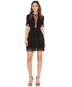 Nicholas | Lace Insert Mini Dress
