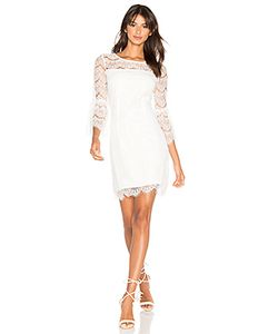 Bobi | Ruffle Sleeve Mini Dress