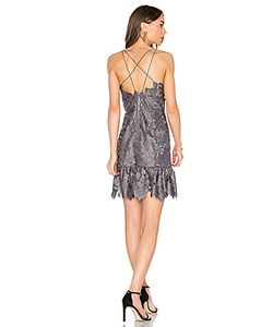 SAYLOR | Кружевное Платье Alayna