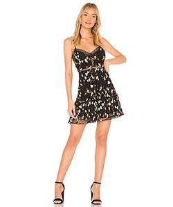 Bb Dakota | Платье Chaka