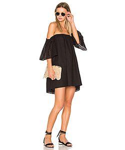 Blaque Label | Платье В Сеточку