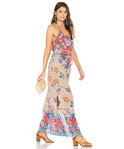 Tolani | Платье Naomi