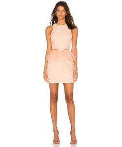 Endless Rose | Lace Feather Peplum Dress
