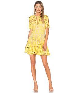 THURLEY | Мини Платье Hollyhock