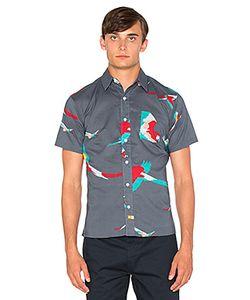 Ambsn | Рубашка На Пуговицах Parrot