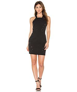 Greylin | Lani Grommet Halter Dress
