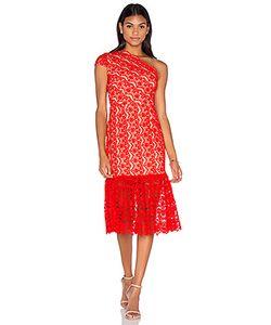 aijek | Camelot Embroidered Toga Dress