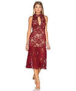 Endless Rose | Sleeveless Lace High Neck Midi Dress