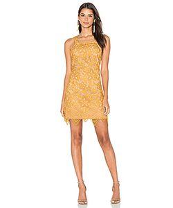 WAYF | Кружевное Мини-Платье Orleans