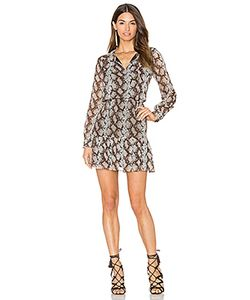 Greylin | Sellia Pintucked Dress