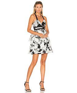 BCBGeneration | Waist Strap Dress