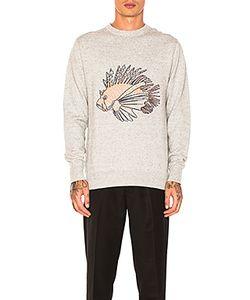 Barney Cools | Вязаный Пуловер Lion Fish