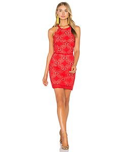 Endless Rose | Woven Lace Dress