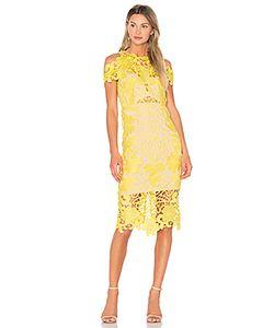 THURLEY | Платье Миди Hollyhock
