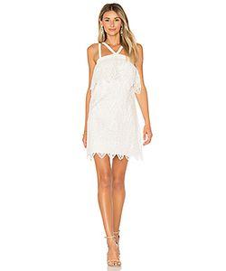 LIKELY   Платье Abergreen