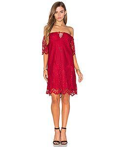 Lucy Paris | Кружевное Платье