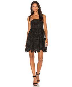 Shona Joy | Мини Платье Antigua