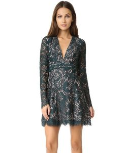 Style Stalker | Кружевное Платье Davis