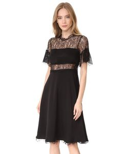 Shoshanna | Платье Mirada