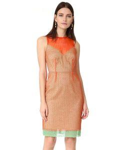 Diane Von Furstenberg | Платье До Колен